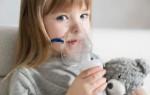 Ингаляции при насморке для детей и взрослых в небулайзере — рецепты